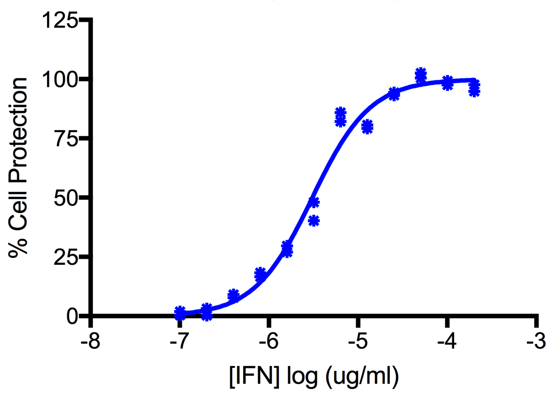 Titration of Human Interferon Alpha A (Alpha 2a) in the A549 Cell Line