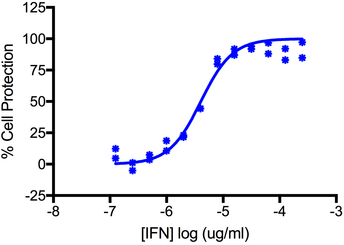 Titration of Human Interferon Alpha A (Alpha 2a), carrier-free, in the A549 Cell Line