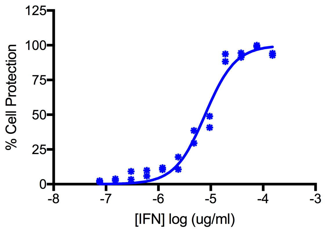 Titration of Human Interferon Alpha A (Alpha 2b) in the A549 Cell Line