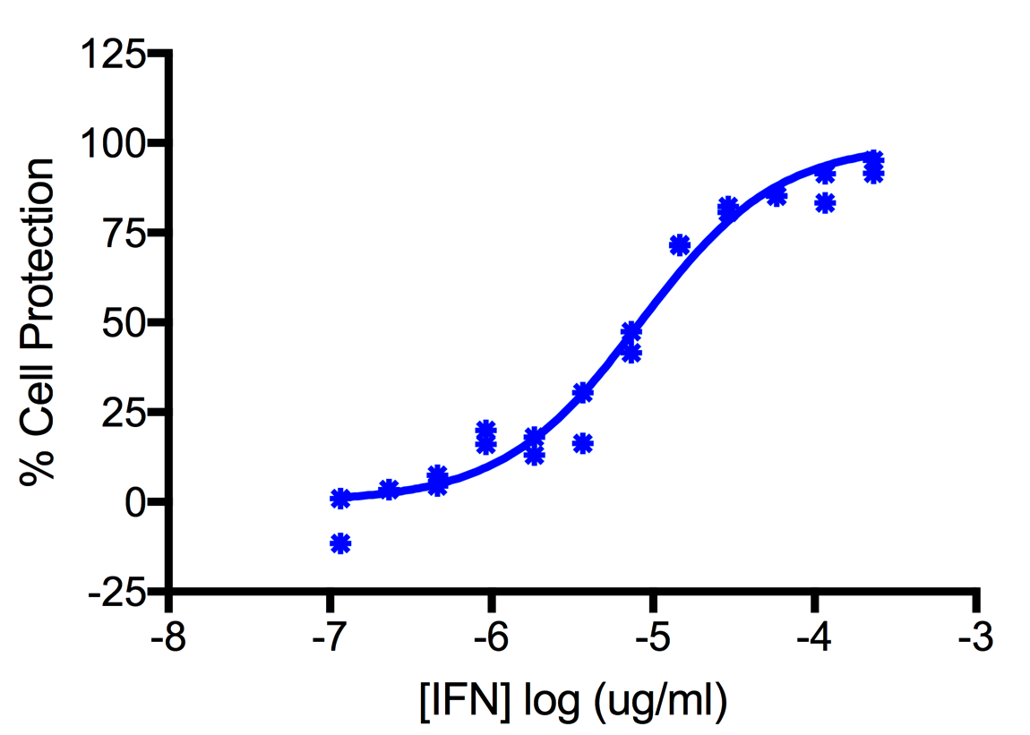 Titration of Human Interferon Alpha C (Alpha 10) in the A549 Cell Line