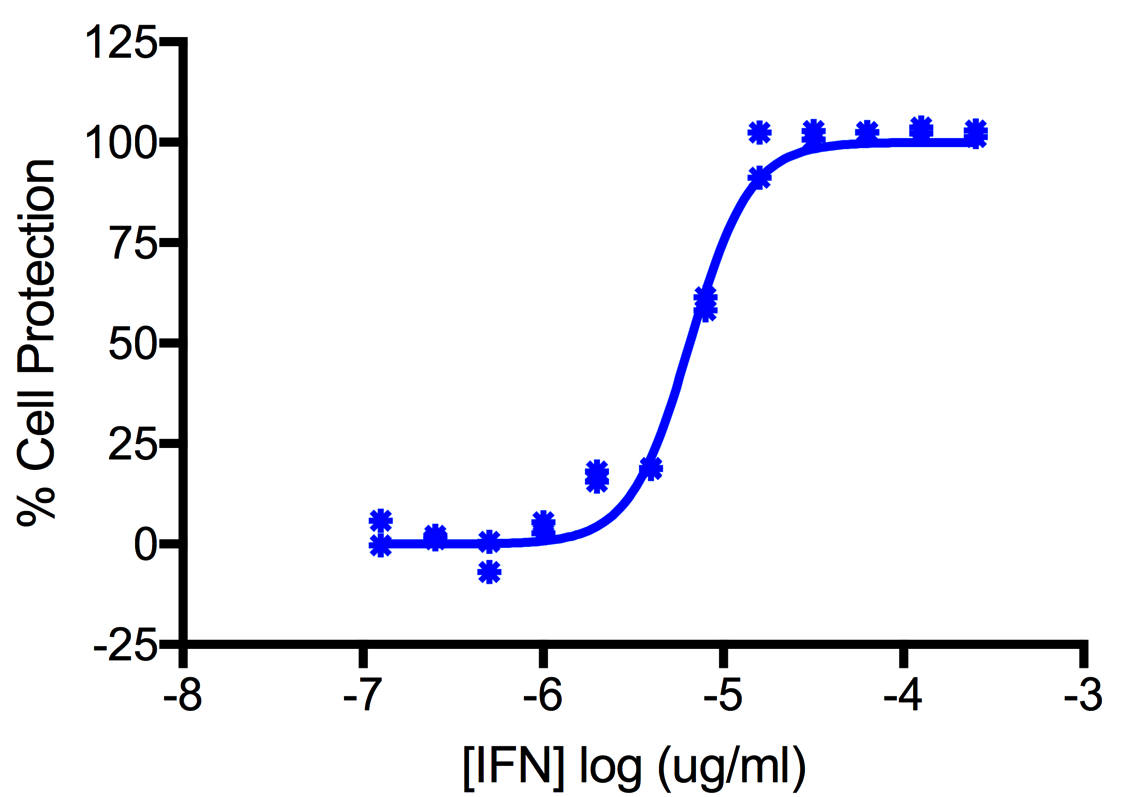 Titration of Human Interferon Alpha F (Alpha 21) in the A549 Cell Line