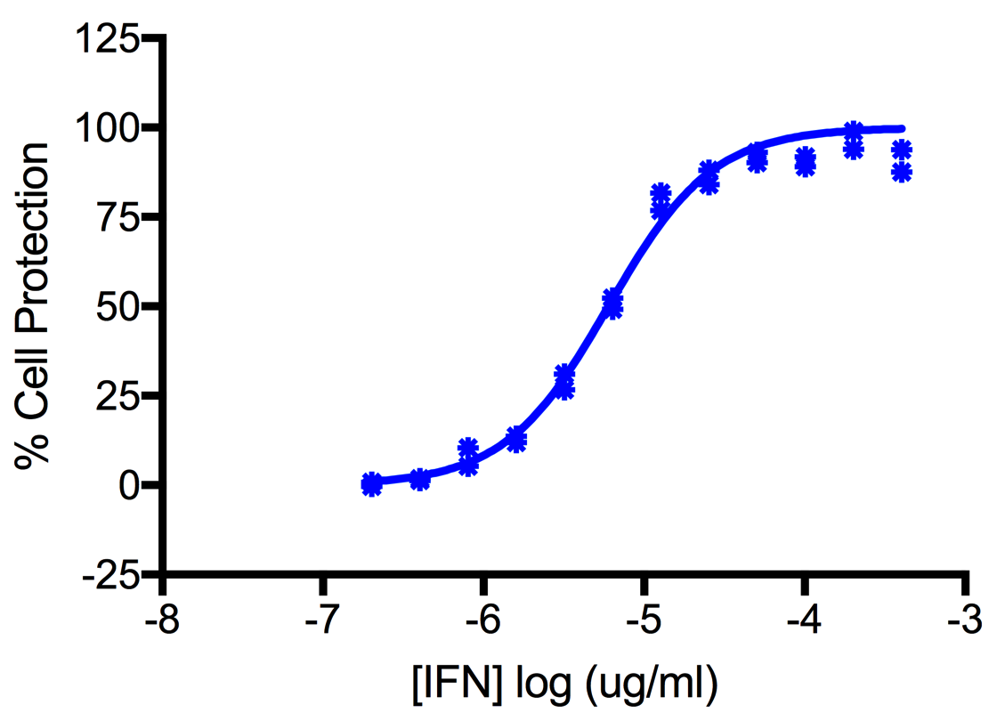 Titration of Human Interferon Alpha G (Alpha 5) in the A549 Cell Line