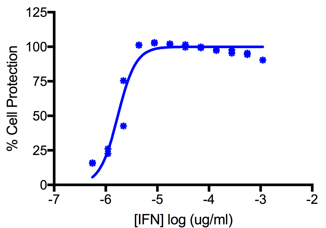 Titration of Human Interferon Alpha H2 (Alpha 14) in the A549 Cell Line