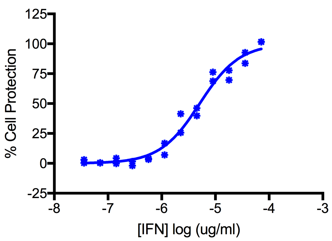 Titration of Human Interferon Alpha I (Alpha 17) in the A549 Cell Line