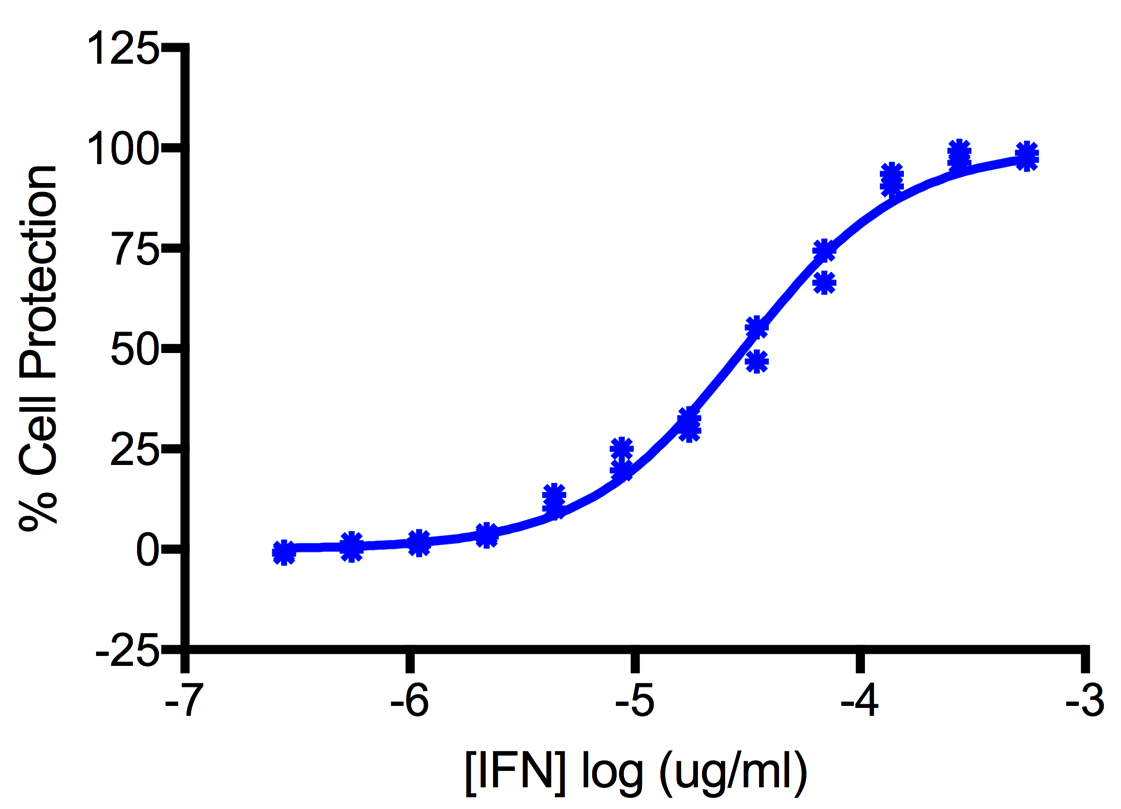 Titration of Human Interferon Alpha J1 (Alpha 7) in the A549 Cell Line