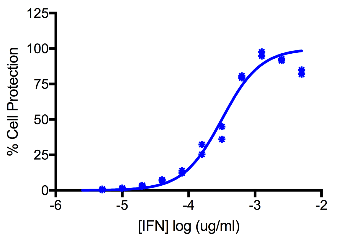 Titration of Human Interferon Beta 1b, E.coli in the A549 Cell Line