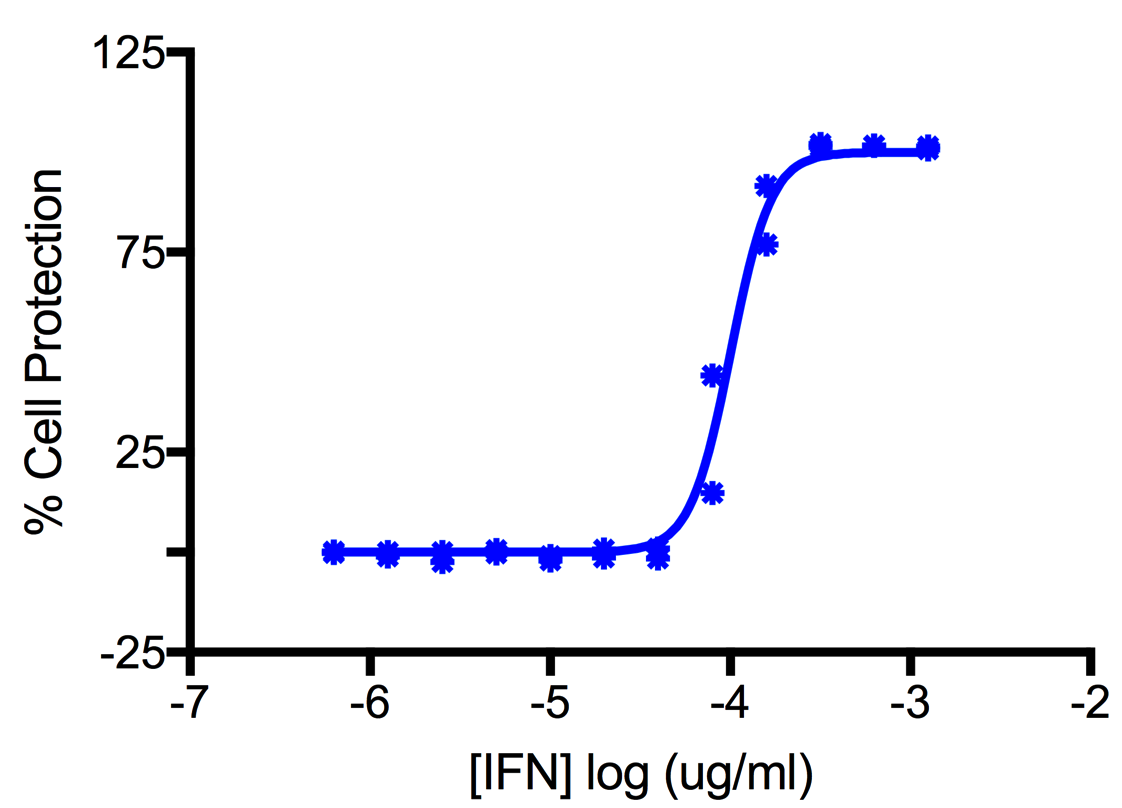 Titration of Human Interferon Gamma in the A549 Cell Line