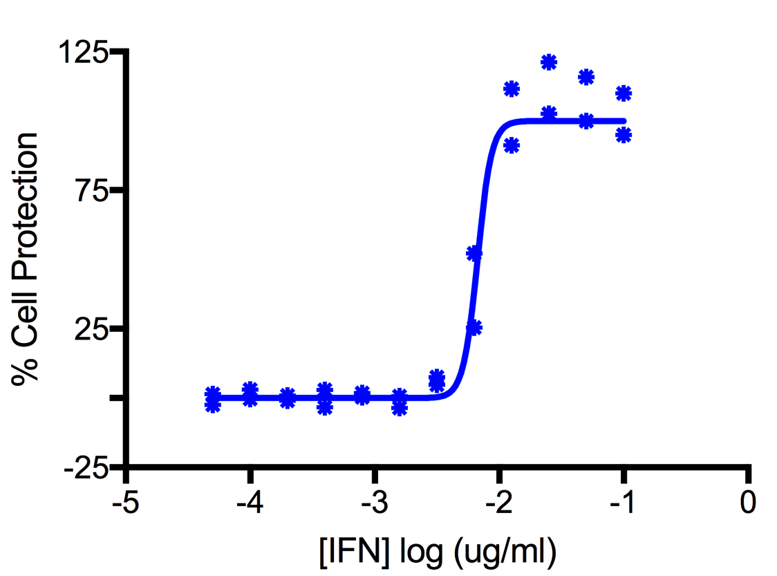 Titration of Feline Interferon Alpha in the ADK Cell Line