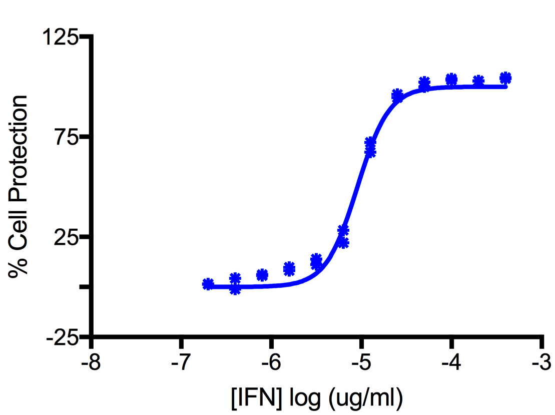 Titration of Porcine Interferon Alpha in the MDBK Cell Line