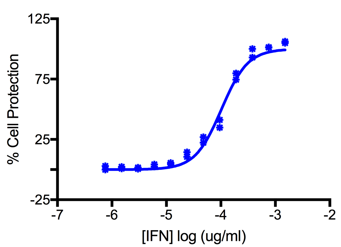 Titration of Bovine Interferon Tau 2 (Mammalian) in the MDBK Cell Line