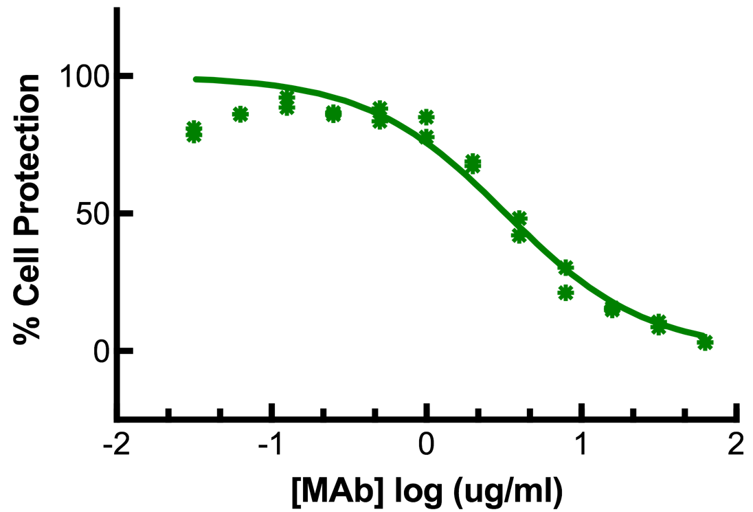 Titration of Rat MAb to Mouse Interferon Alpha in the L929 Cell Line