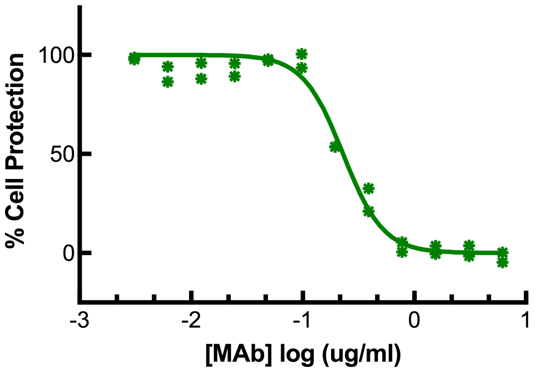 Titration of Rat MAb to Mouse Interferon Gamma in the L929 Cell Line